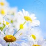 شش سوال بنیادین در مورد زندگی روحانی